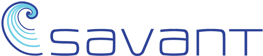 Savant - Software Innovation for Businesses